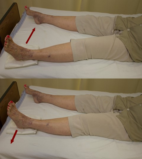 Hip adduction (Small)